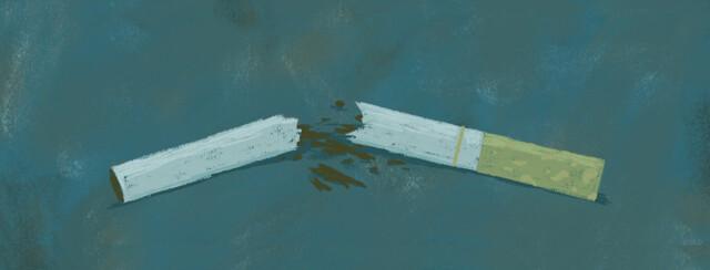 A cigarette broken in half.
